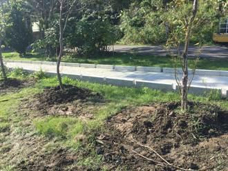 山豬窟垃圾掩埋場變身  打造櫻花林