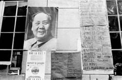 暴力的門徒 西方新左派也搞毛澤東崇拜