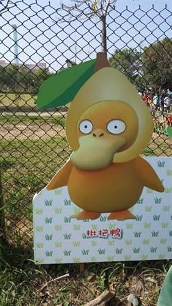 花毯節吉祥物「枇杷鴨」涉侵權 中市府:已撤下