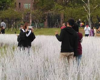 《春雪後》太夯 竹市地景藝術慘遭遊客踐踏