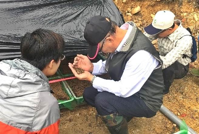 南投林管處長李炎壽〈中〉引進他在東勢林管處成功培育菌根苗木的經驗,採行現場簡易的菌根感染方式育苗。(林管處提供)