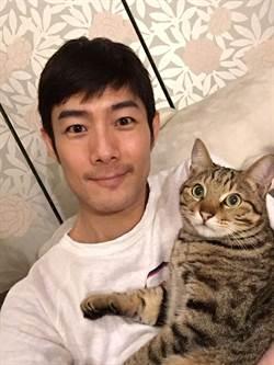 施易男花30萬救貓  詮釋芭蕉雨特有感