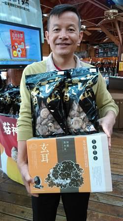 菇神搶食年節送禮商機 大推頂級原木香菇