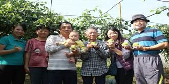 80歲果農吳金騰帝王蜜棗 每公斤衝160元