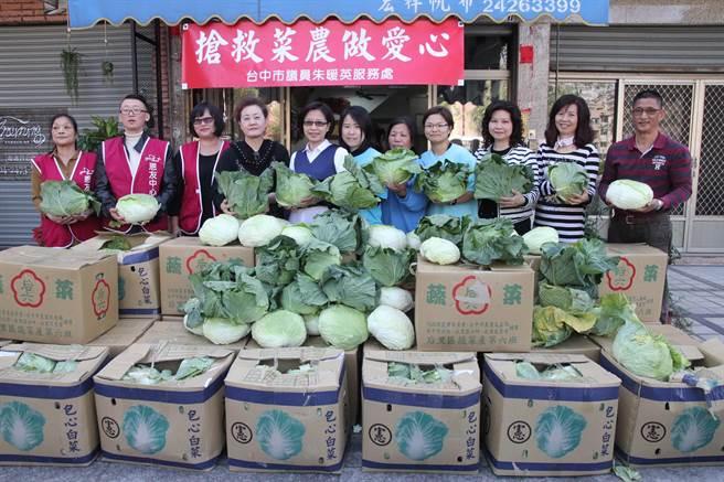 市議員朱暖英搶救菜農做愛心,認購600公斤高麗菜捐給社福團體。(陳淑芬攝)