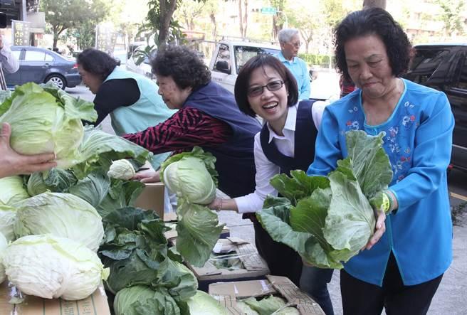 市議員朱暖英(右2)搶救菜農做愛心,社福團體長輩忙著挑選新鮮高麗菜。(陳淑芬攝)