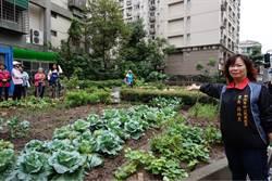 髒亂點變身複合式菜園  里民採菜趣
