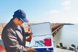 釣客、漁民見證 六輕海域魚種多