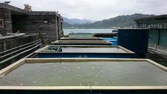 海洋資源復育 復育離岸藻類開發漁業資源