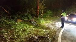 三峽白雞傳男子疑遭虐致死案