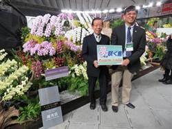 日本世界蘭展 台灣景觀布置獲第2名「優秀賞」