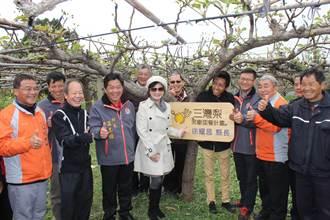 三灣青年梨農推果樹認養 號召民眾支持農業
