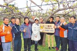 認養1棵梨樹 支持三灣果農