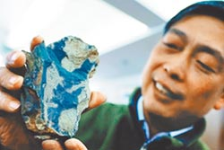 安吉動物群化石 揭密4.45億年前