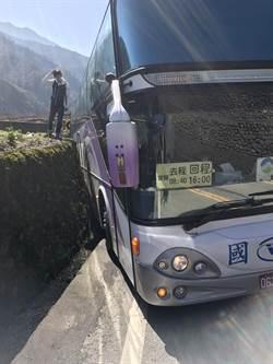 賞櫻專車不慎卡山路邊溝 幸無人傷