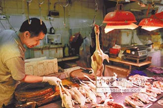 H7N9疫情升溫 陸單周死8人
