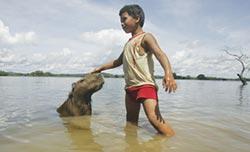 巴西水壩與民爭地