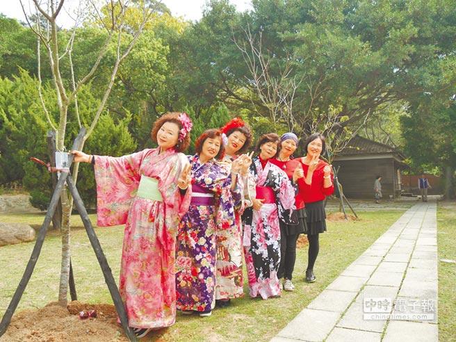 嬌客到訪日本加賀市18日捐贈77棵河津櫻給桃園市政府,全數種在忠烈祠暨神社文化園區,受邀表演日本歌唱舞蹈的在地團體開心在櫻花樹前合影,希望後年能看到櫻花綻放。(蔡依珍攝)