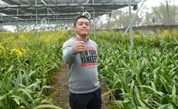 農業賢拜廖秉鋐經營農業學習傳統並思考創新