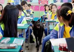 武陵2校犬陪警衛巡查校園 深獲學生喜愛
