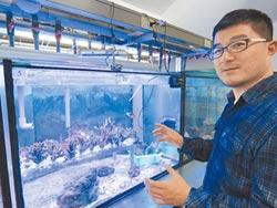 外木山漁港珊瑚 海科館代孕