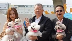 竹縣首座寵物運動公園啟用