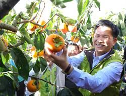 中市「農業張老師」解決農友疑難雜癥