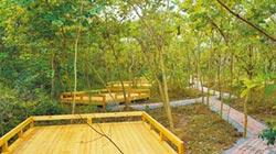 陸拚3年 建21露營地 廣西為據點