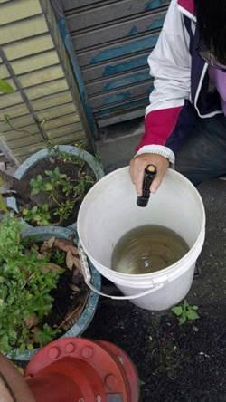春雨報到 南市巡查660戶清除104個積水容器