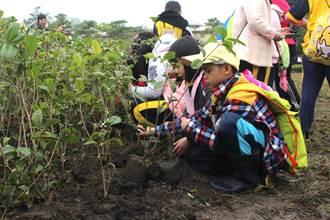 近千人齊種樹 東華大學植樹活動邁入第十年