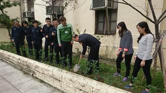 颱風植栽折損 中市第一警分局植樹節種桂花樹籬