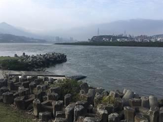 關渡紅樹林太茂盛 北市擬解編部分保護區