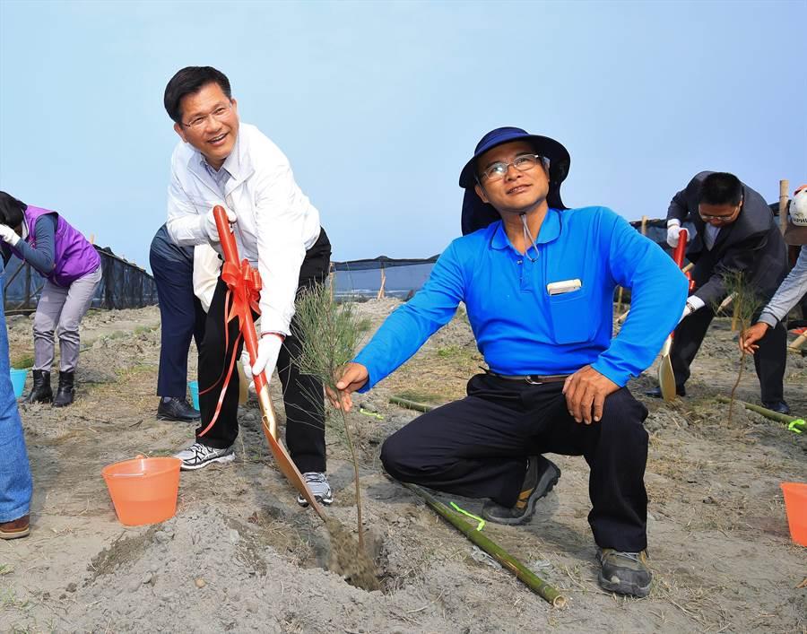 台中市長林佳龍親手種植防風、耐鹽及抗旱,期盼成林後,復育海岸棲地。(王文吉攝)