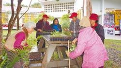 行動教室 打造原鄉新經濟作物