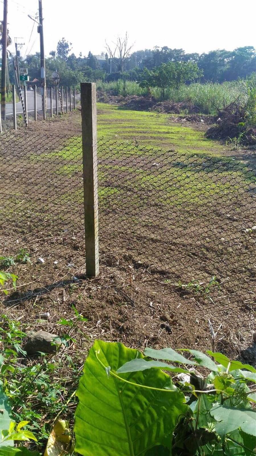 竹山汙水廠明年10月開工,土地閒置期縣議員爭區先種花美化。(沈揮勝翻攝)