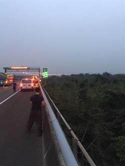男子精神恍惚 撞車後跳10米高路橋毫髮無傷