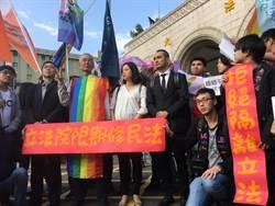 同婚釋憲今辯論 彩虹淹沒司法院