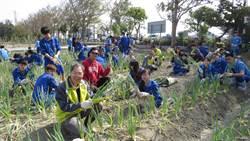 二林高中「種蔥」 傳承聰明給國中部的學弟妹