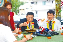 民進黨:柯與綠營關係淡如水