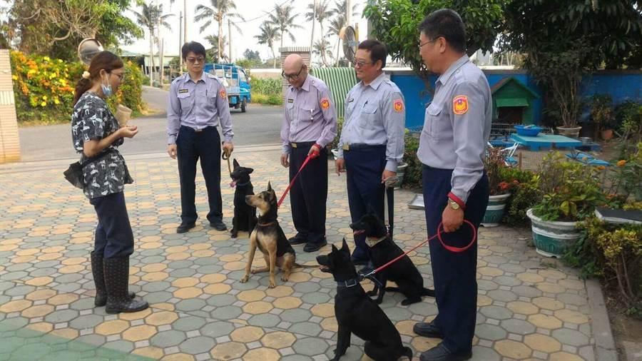 台南市警第三分局首批5隻「波麗士警衛犬」正式成軍。(曹婷婷翻攝)
