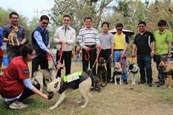 台南市推認養多元化 動保處幫狗狗開職訓班