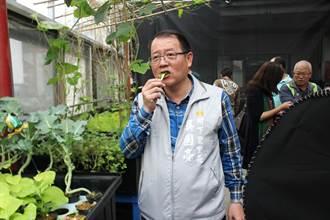 樹下里魚菜共生 里長吳國亮發起無毒生活