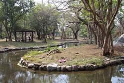 百年嘉義公園  探訪陳澄波寫生地