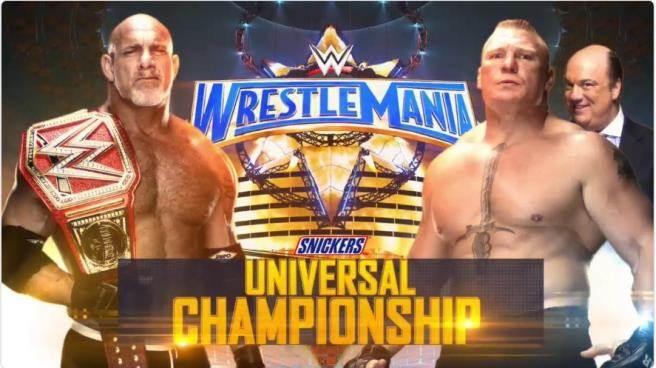高柏(左)與萊斯納的世界冠軍爭霸戰。(摘自WWE推特)