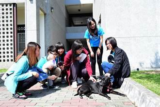 6位女大生關心毛小孩 寵物餐廳獲商業創新競賽亞軍