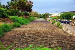 萬丹「流屎河」太嚇人 環保局查出8家牧場是元凶