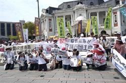 民眾抗議東豐快 中市府:新方案已主動送2階環評