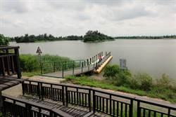 宜梧滯洪池生態多樣 沿海賞鳥新景點