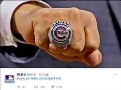 MLB》小熊世界大賽冠軍戒 108顆鑽石+暗藏山羊