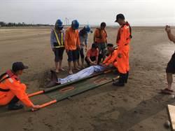 抹香鯨擱淺出海口 海巡與民眾合力救援